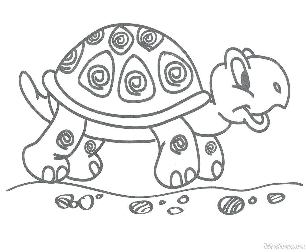 Детская раскраска. Черепаха