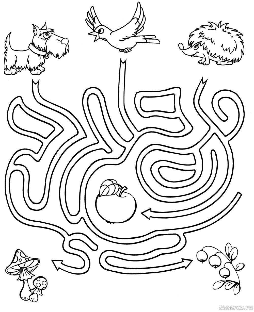 картинка головоломка животные последнее