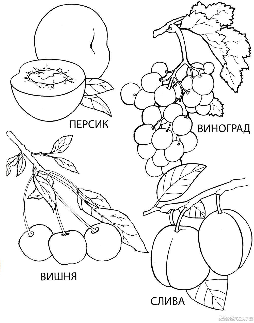 Раскраска для детей 4-6 лет. Ягоды и фрукты