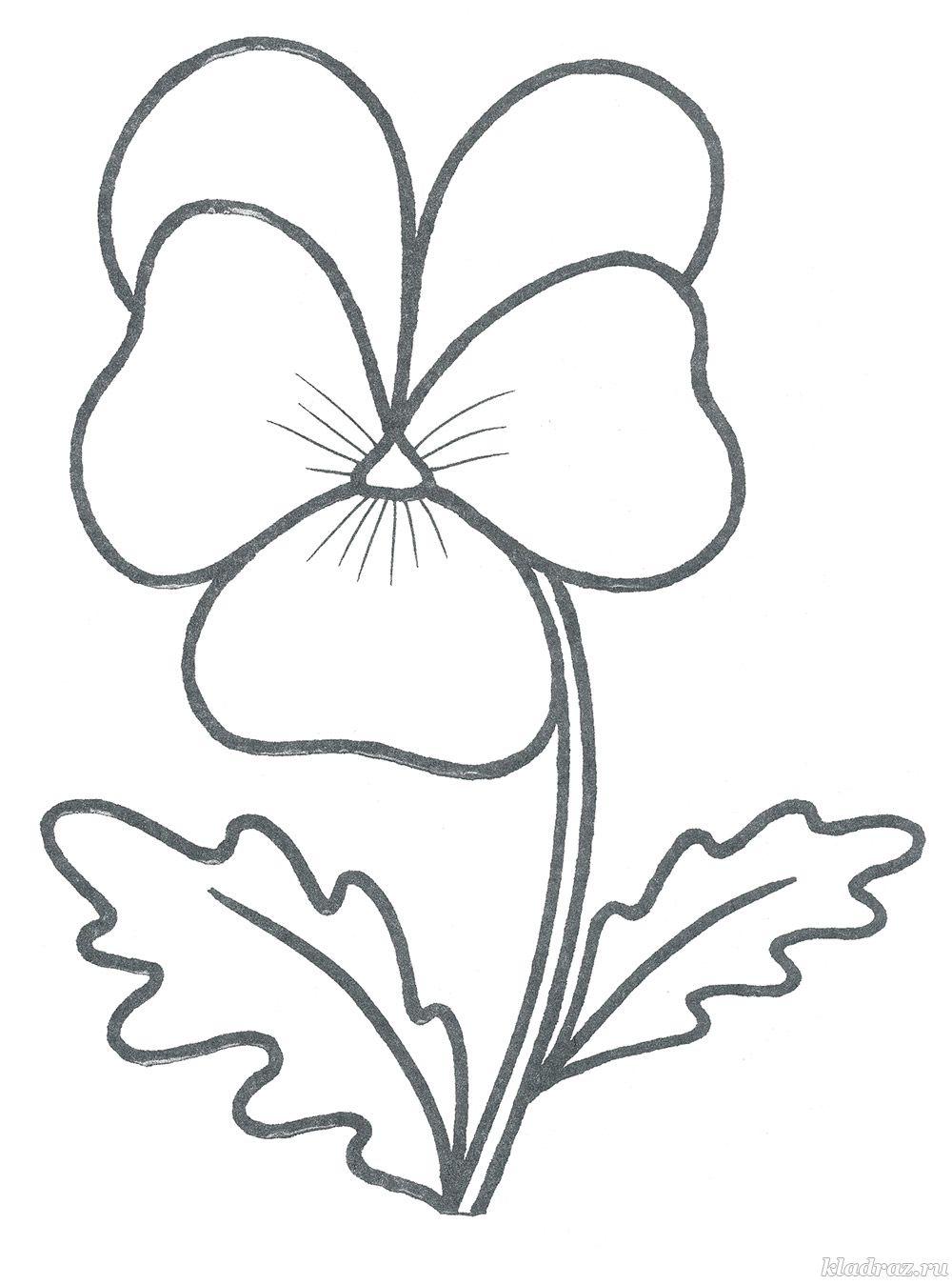 раскраски цветы для детей 3 4 лет распечатать бесплатно