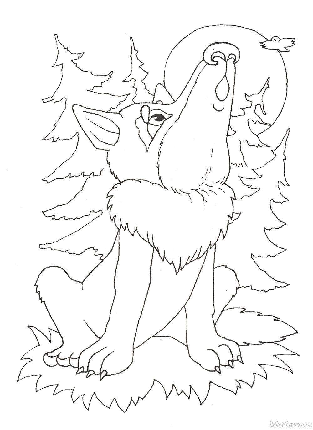 Раскраска для детей 6-8 лет. Волк