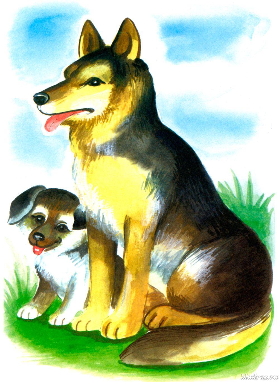 Картинка для детей. Собака и щенок