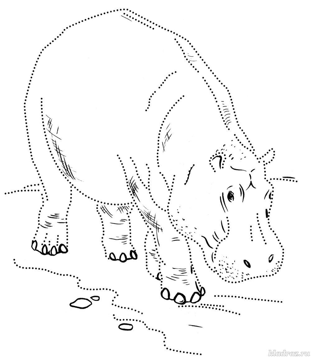 Раскраска домашние животные - распечатать картинки для детей | 1153x1000
