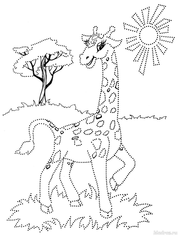 Раскраска для детей 5-6 лет