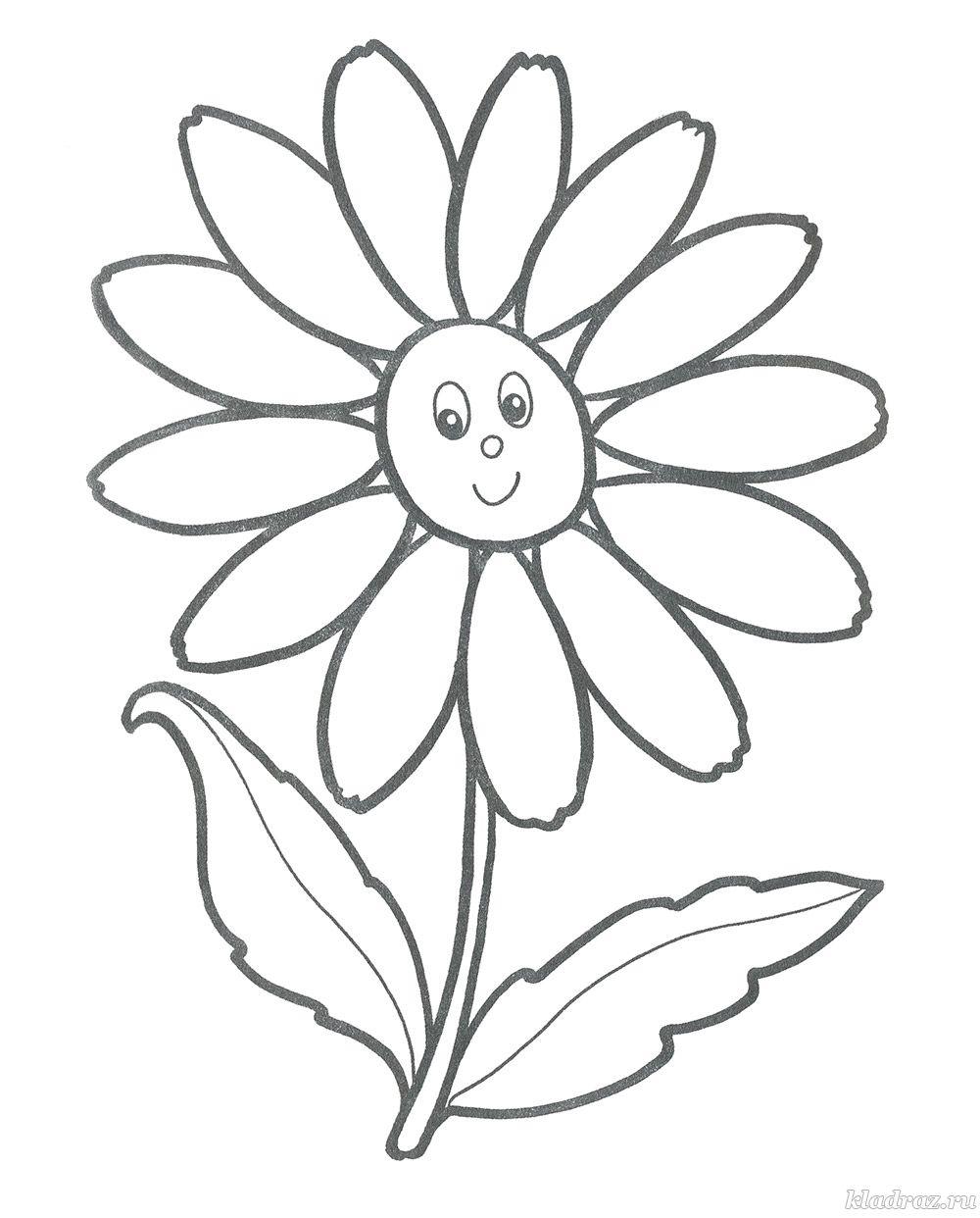 Раскраски «Цветы» для детей 3-4 лет распечатать бесплатно