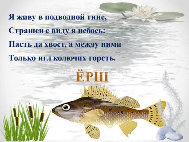 загадки о рыбах в картинках нашем государстве