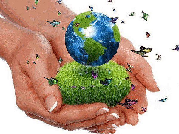 Проект по экологии в подготовительной группе детского сада