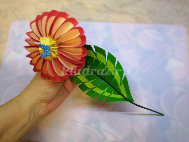 22845_043273ab8243308014fc51195da879fb Цветы из бумаги своими руками - Схемы, шаблоны для вырезания - Пошагово для начинающих