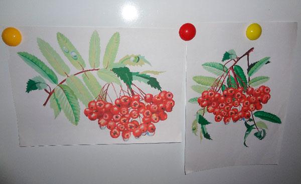 нетрадиционная техника рисования в подготовительной группе