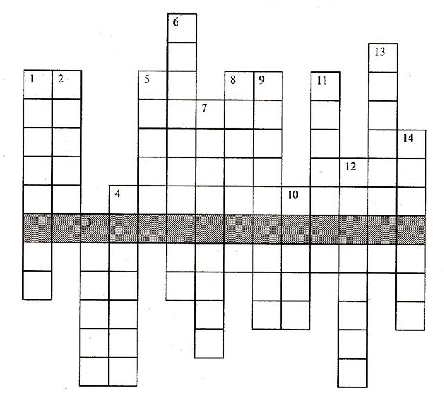 Крансворд из пяти букв для 5 класса
