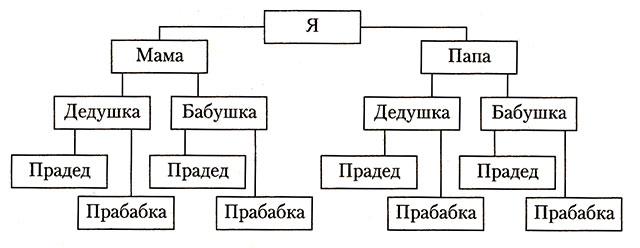 А сейчас, имея эту схему, выполните несколько заданий.  1. Напишите фамилии, имена и... Составление схемы родословной.
