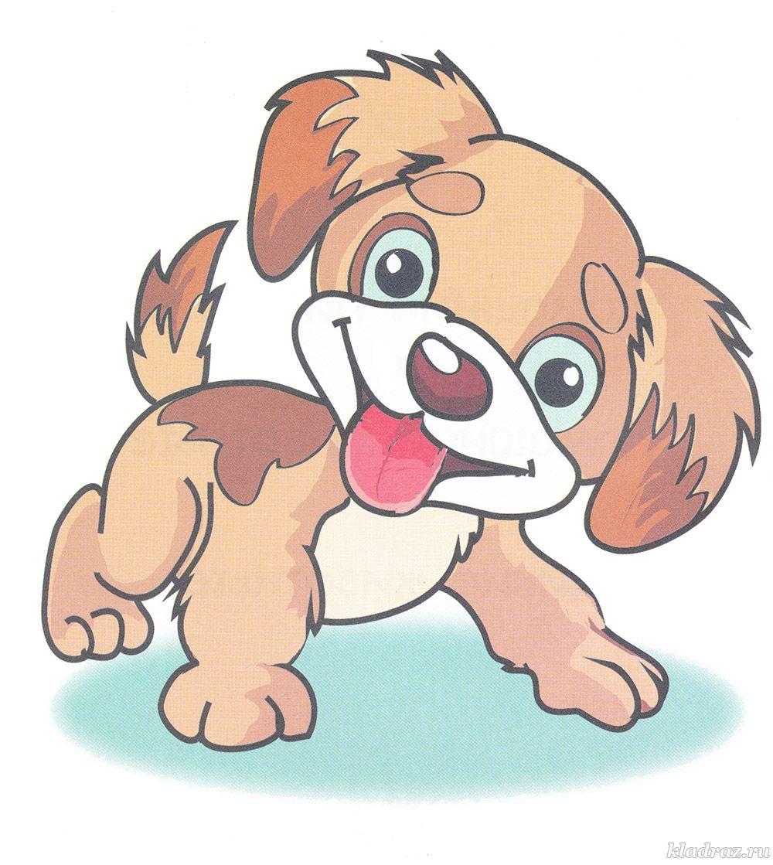 Собак фото бесплатно