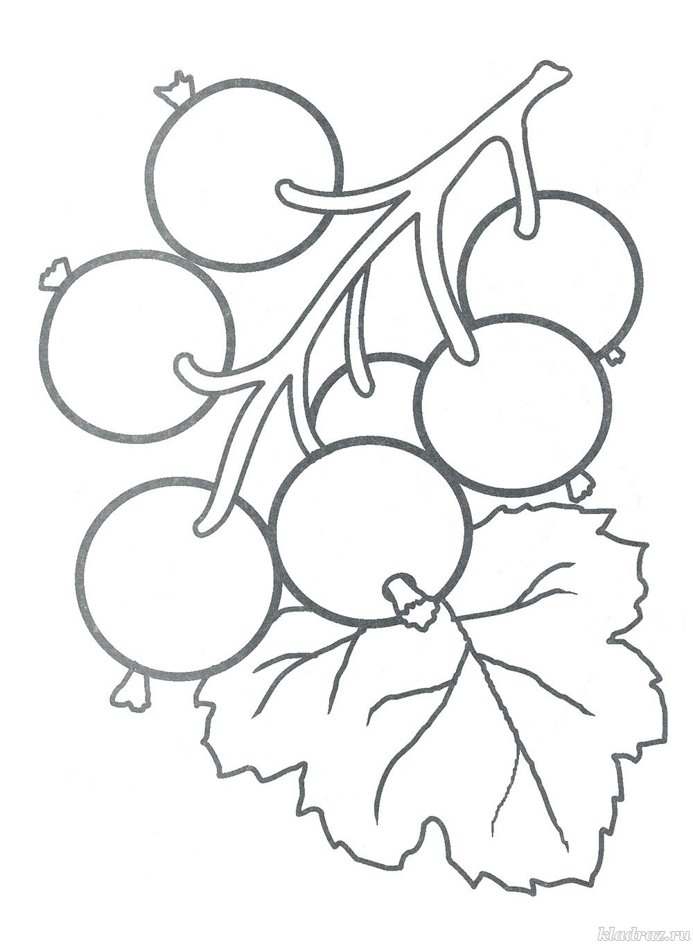 Раскраски «Ягоды» для детей 3-4 лет распечатать бесплатно