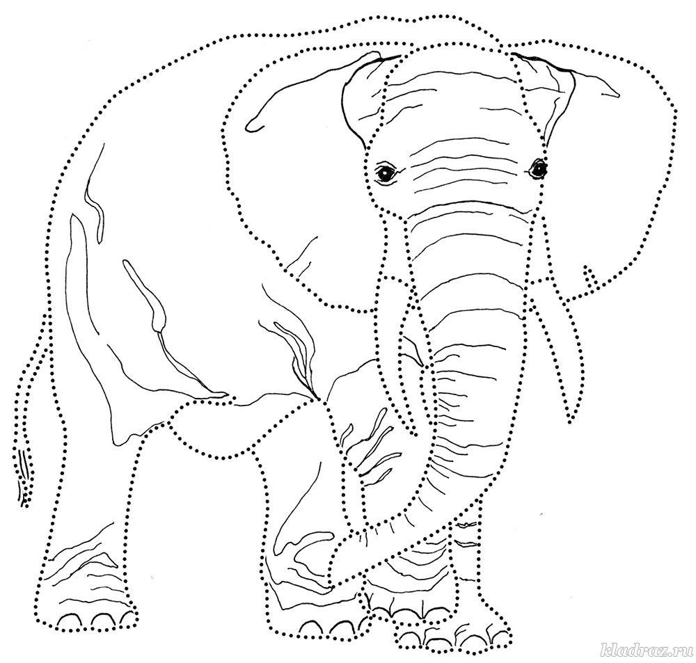 Раскраска для детей 6-7 лет