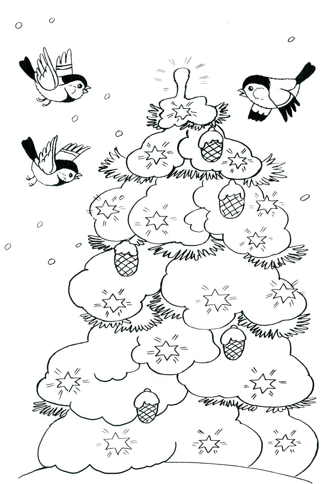 Снегирь раскраска картинки