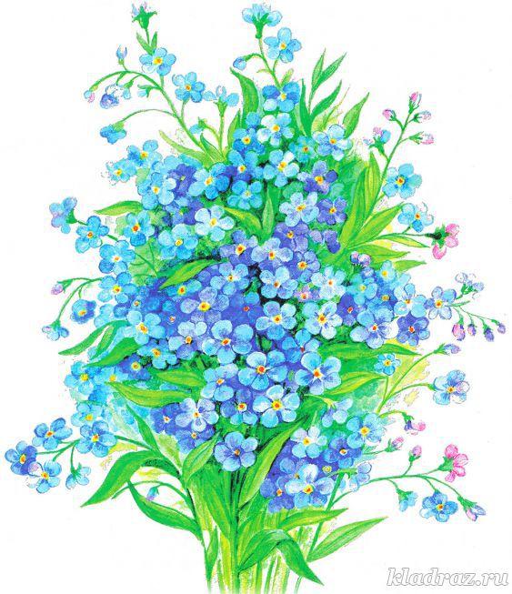 Картинки для детей. Букет полевых цветов