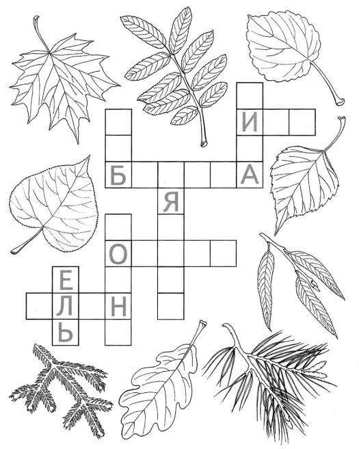 Кроссворд для дошкольников по теме: Листья