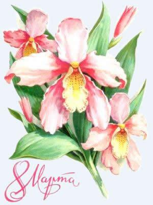 Поздравление олегу с днем рождения открытки