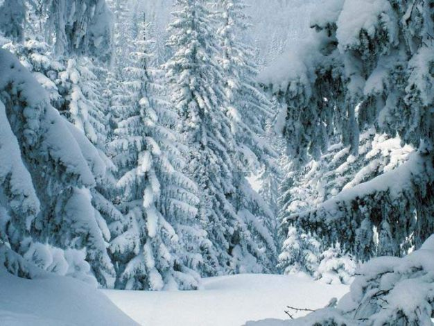 Детям про зиму картинки речевой материал