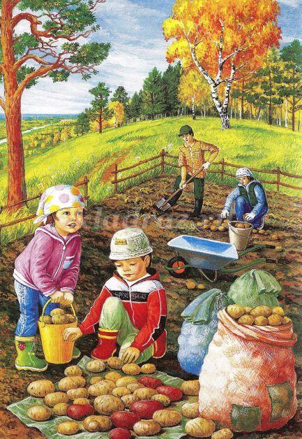 Картинка морковка для детского сада
