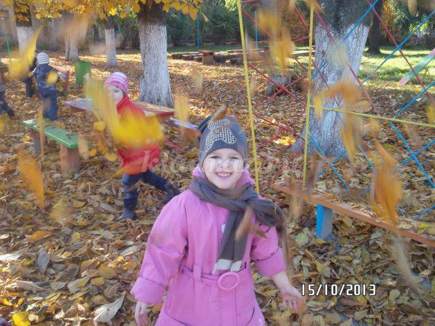 Гербарии из листьев своими руками фото