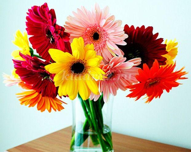 Фото цветов из цветной бумаги