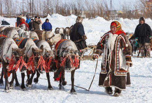 Киев купить дешевую зимнюю куртку женскую