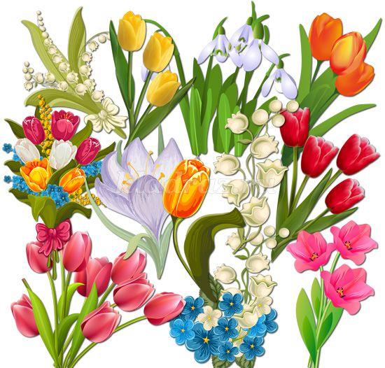 рисунки весенних цветов: