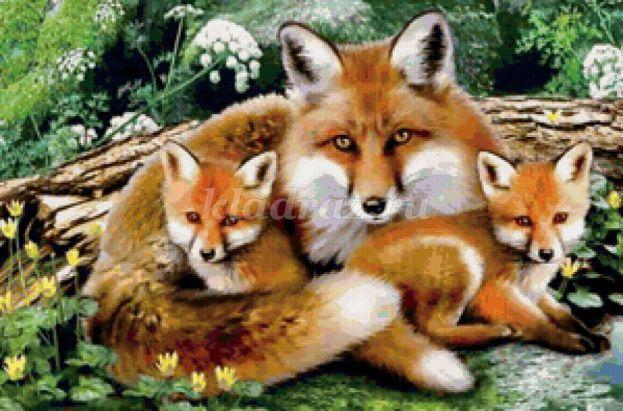 картинки лиса с лисятами