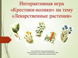 Сценарий игры «Крестики-нолики» о лекарственных растениях для учащихся начальной школы