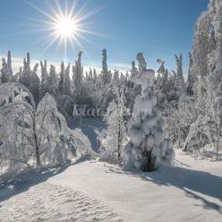 Стихи о зиме для детей 6-12 лет