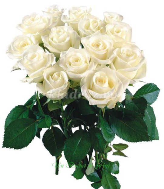 Картинки с розами с надписью 8 марта