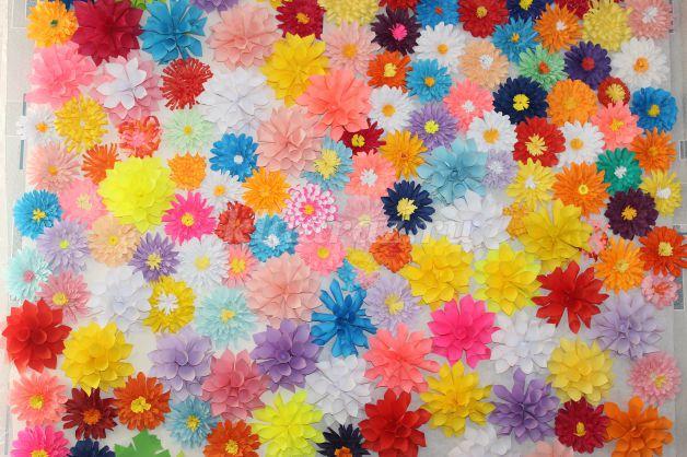 Крокусы (50 фото цветов посадка, уход, размножение)