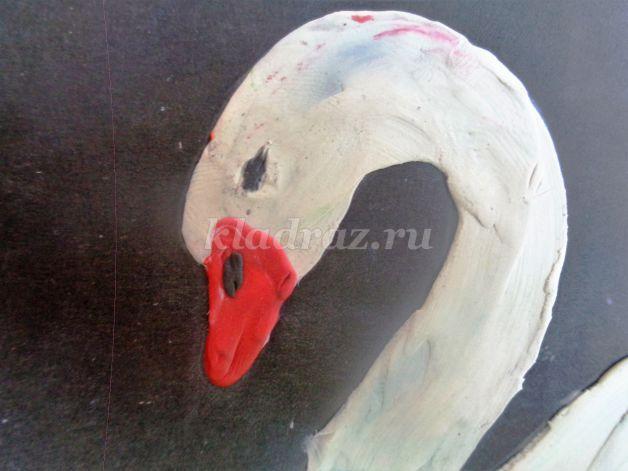 Лебедь 42 фото  classpicru